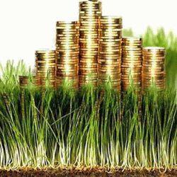 Консультации юристов по уплате налога на землю для физических и юридических лиц
