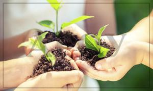 нарушение правил экологической безопасности