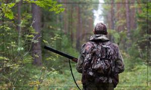 браконьерство в Украине