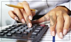 Обжалование акта налоговой в судебном порядке (ТЦО)