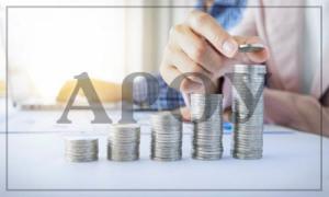 Контроль и проверка внесения финансов в уставной капитал
