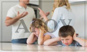 Сопровождение судебного дела о лишении родительских прав