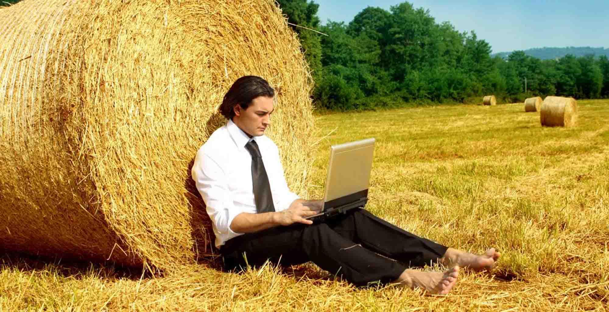 Консультации адвоката в сфере земельного и аграрного права